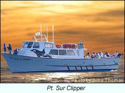 Pt. Sur Clipper